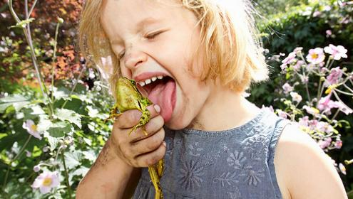 Ivy licking a frog