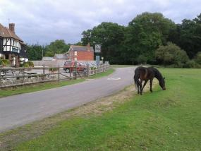 Note that the fences enclose the pub, not the horses.