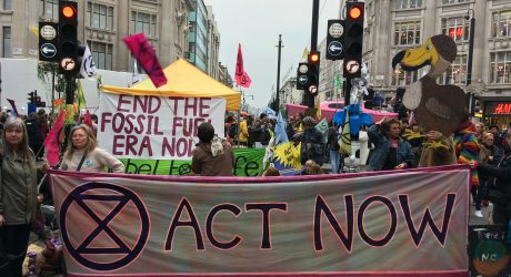 "Extinction Rebellions protesters to occupy London ""until our demands are met"""